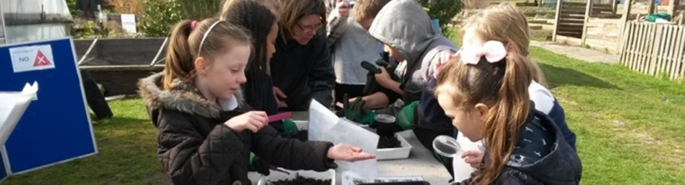 School children learning what can and can't be composted