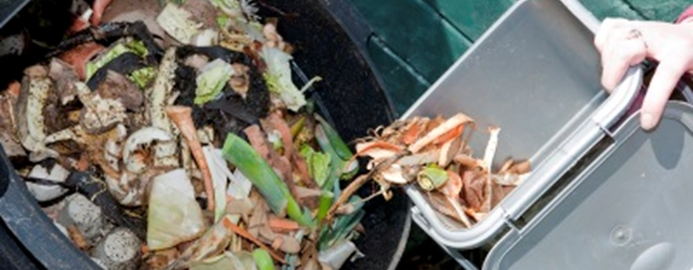 putting compost waste into compost bin